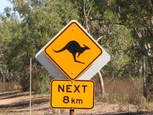 Australien_IMG_1062-11