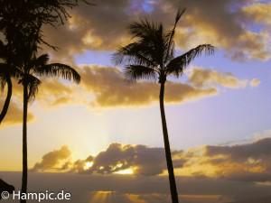 Hawaii-1
