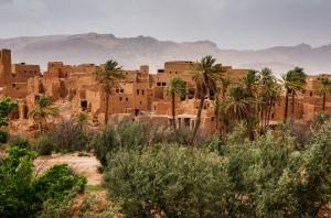 Marokko_070_K5__7347