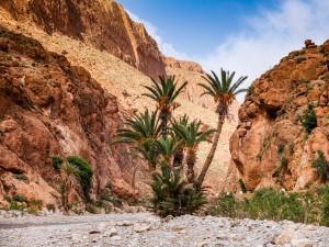 Marokko_073_DSCF8653