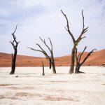 Namibia_Pic_208