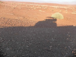 Namibia Pic 141
