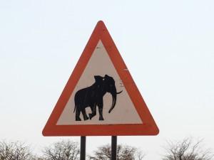 Namibia Pic 159