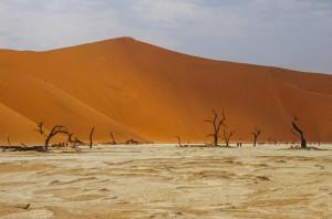 Namibia Pic 207