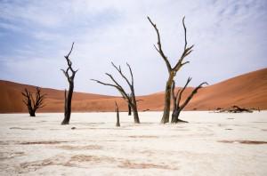 Namibia Pic 208