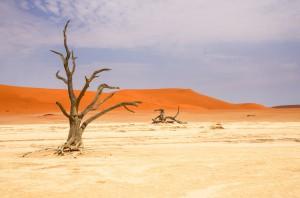 Namibia Pic 212