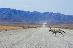 Namibia Pic 222
