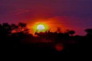 Namibia Pic 257