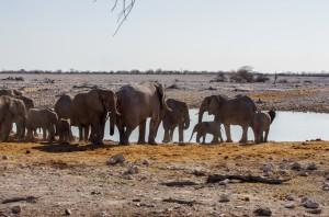 Namibia Pic 82