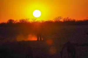 Namibia Pic 88