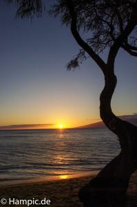 Hawaii-46