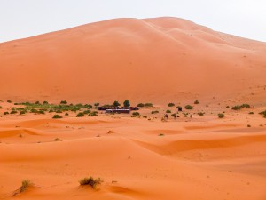 Marokko_089_DSCF8803