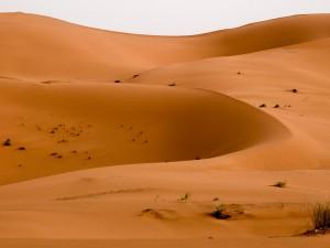 Marokko_092_DSCF8846