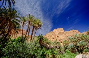 Marokko_179_K5__8312
