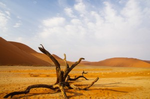 Namibia Pic 196