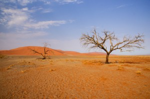 Namibia Pic 200