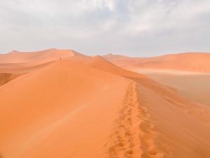 Namibia Pic 202
