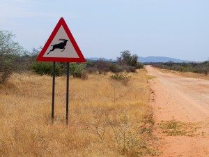 Namibia Pic 30